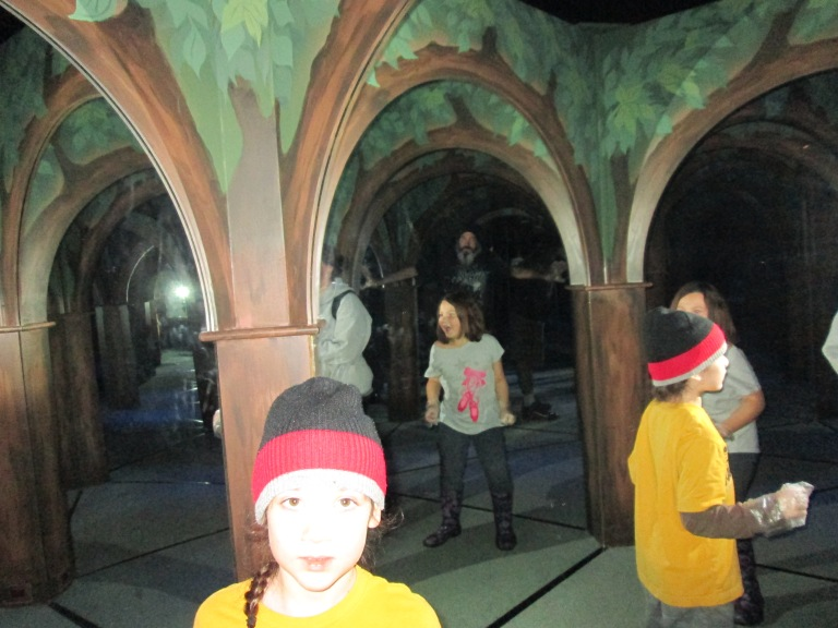 Mirror Maze, MagiQuest, Pigeon Forge, Tennessee